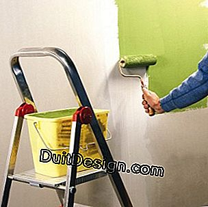 Decorate a plasterboard wall