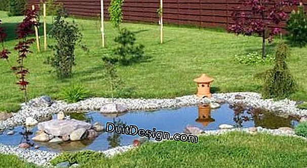 Maintenance of a garden pond