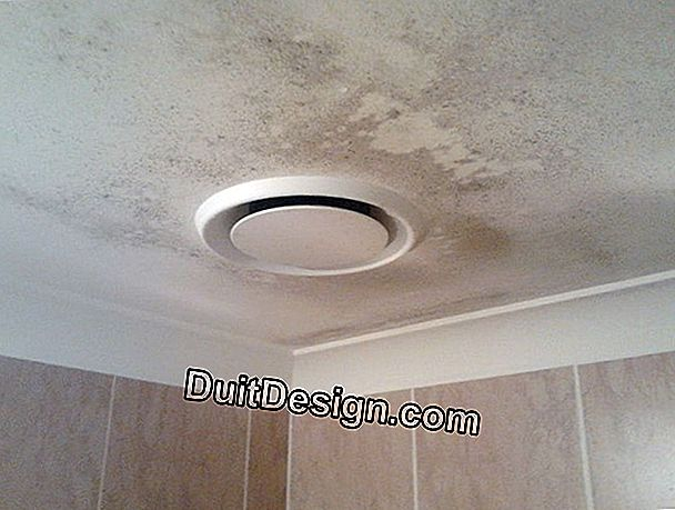 Mold on the ceiling of the bathroom