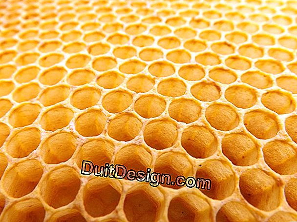 Honeycomb Monomur