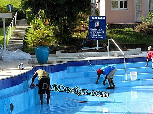 Maintenance of the water of a swimming pool