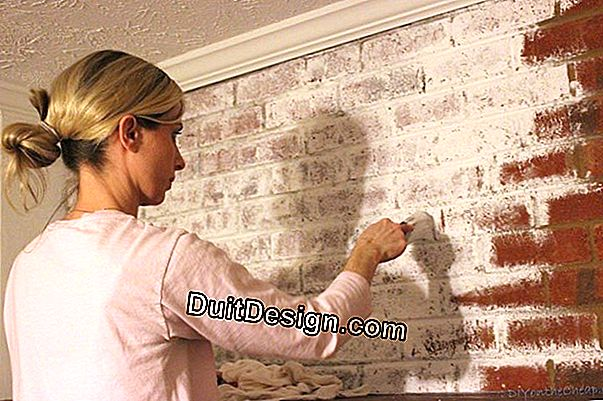 Choose plaster or lime to redo a wall