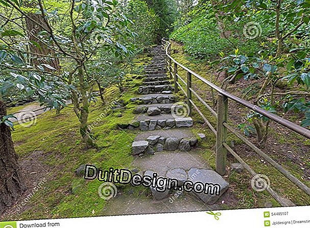 A path in Japanese steps