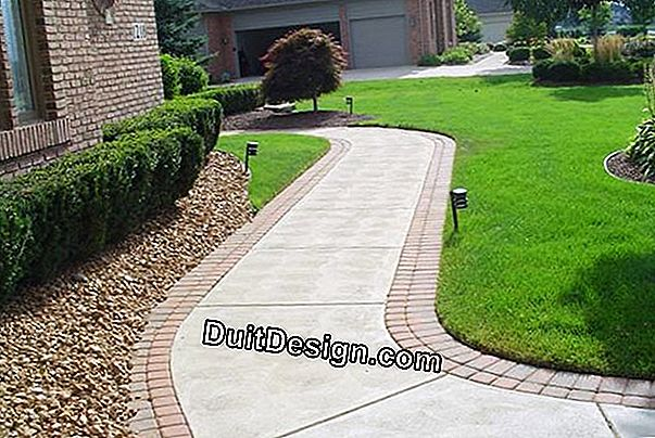 Redo the joints of a stone driveway