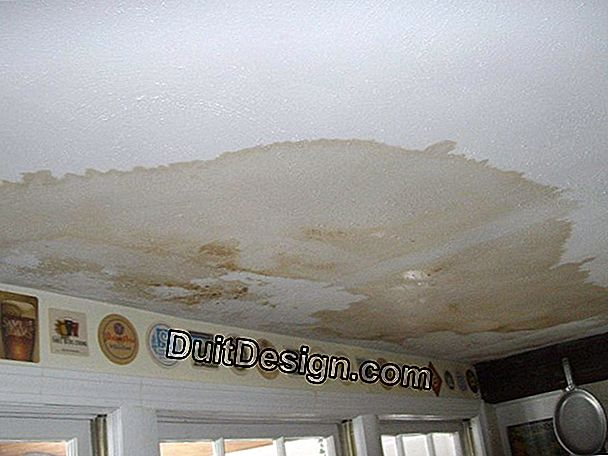 Painting for wet ceilings?