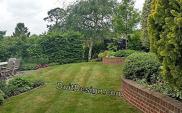 Create a sloping garden