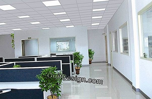 Lighting the rooms and the office area