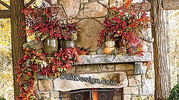 A decor in the colors of autumn