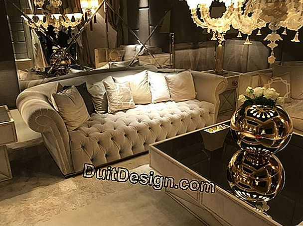 Baroque style lounge
