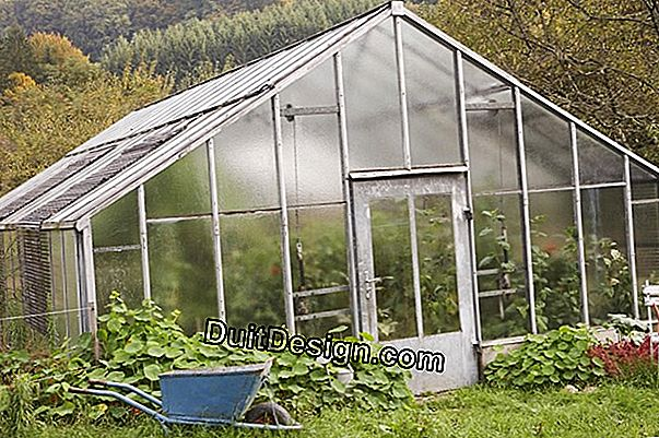 How to create a garden greenhouse