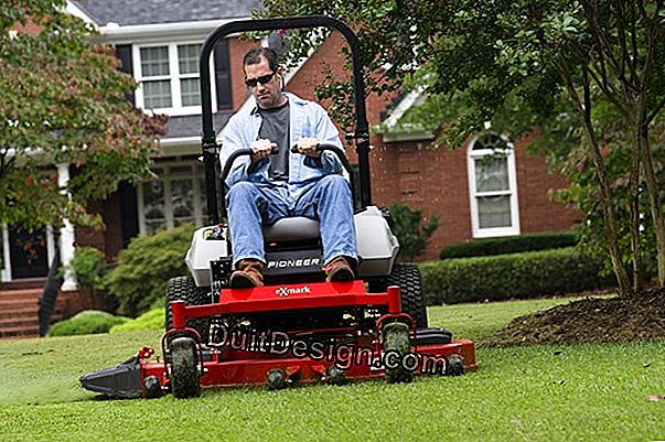 Lawn mower: cutting systems