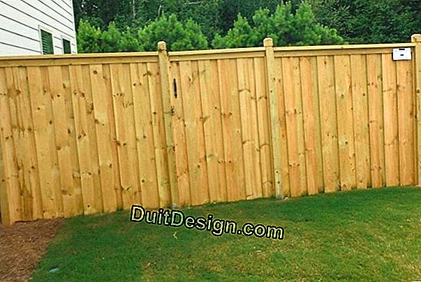 Repair a wooden fence and its gate