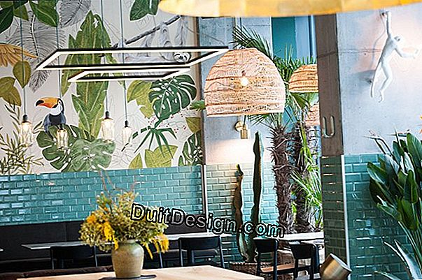 Focus on the Urban Jungle trend in decoration