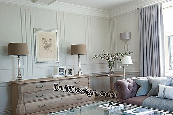 How to create a Gustavian style in a house?