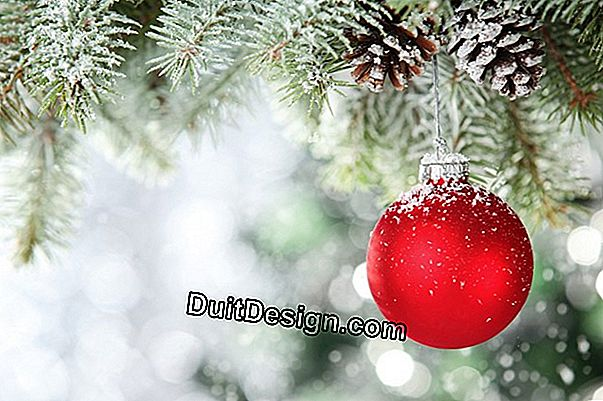 How to decorate your Christmas tree?