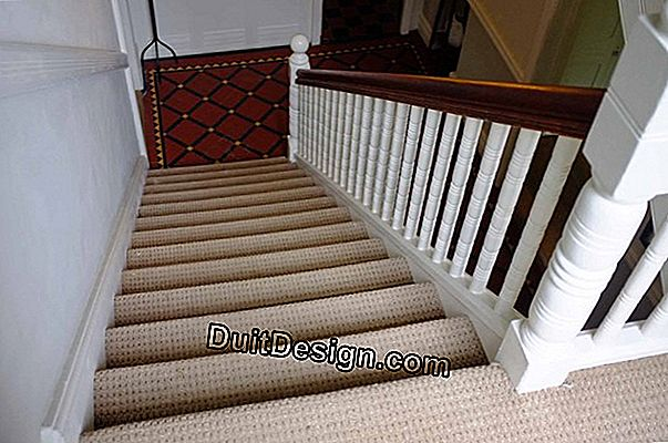 The stair carpet