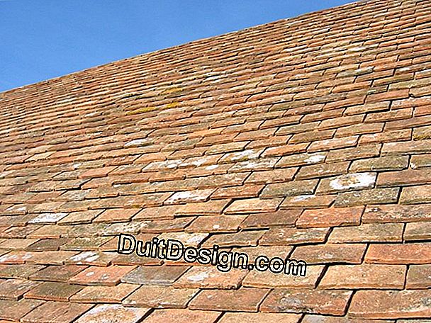 Roof with terracotta tiles