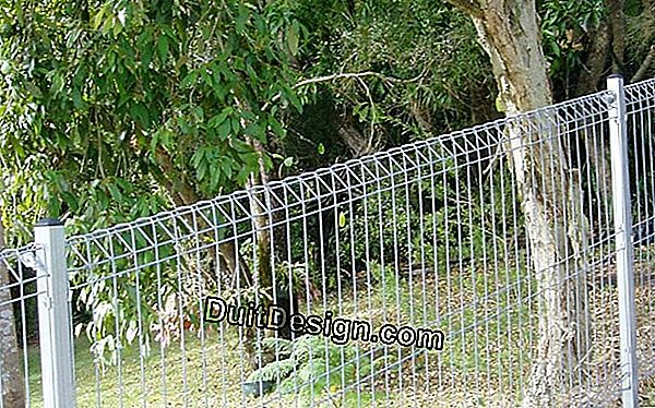 Install a fence made of wire mesh panels