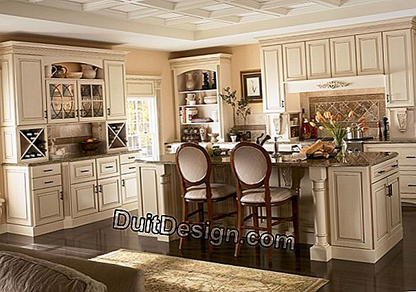 The different forms of kitchen hood