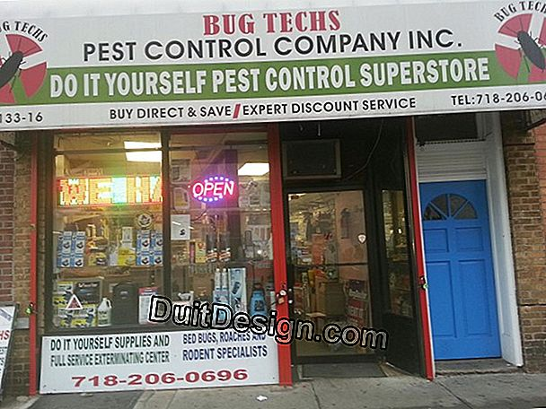 Call on a pest control company