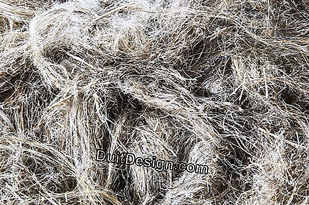 Insulation with flax fiber