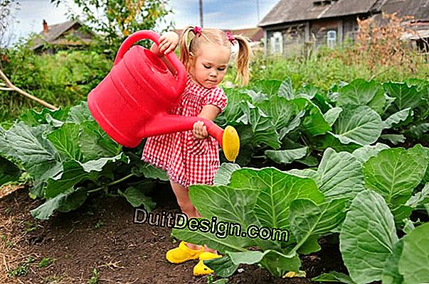 PREPARE THE GARDEN WATERING SYSTEM