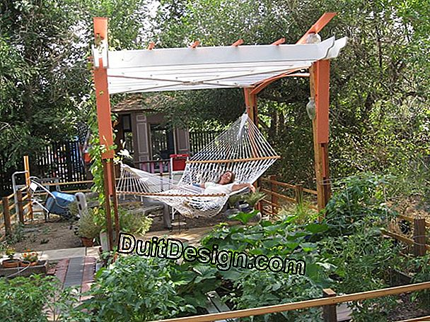 Install a hammock in the garden