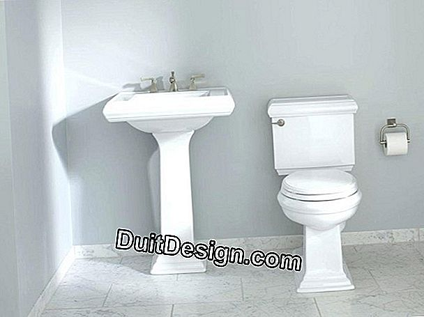 The pedestal sink