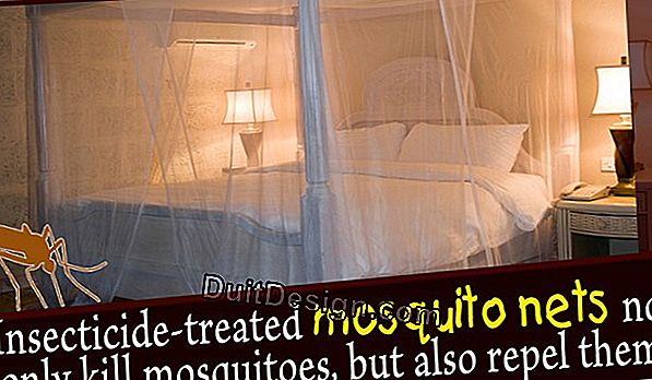 Choose a mosquito net.