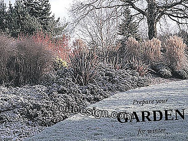 Prepare your garden for the winter.