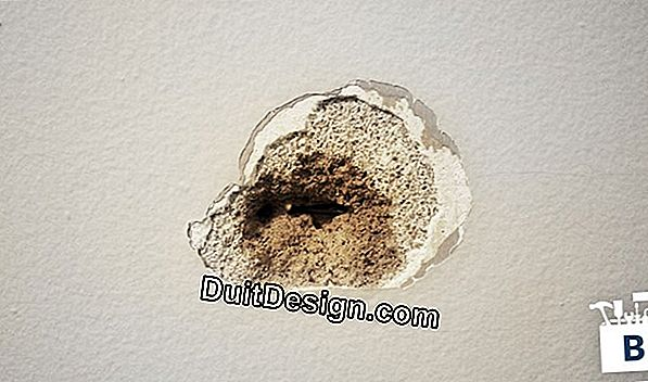Repair a hole in a plaster wall