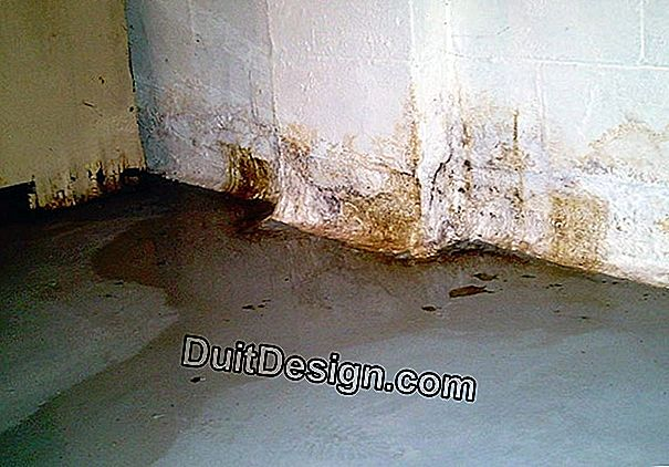 How to solve a problem of humidity in a cellar?