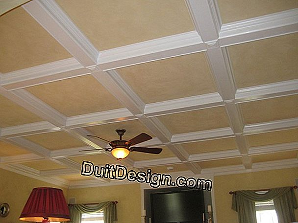 The coffered taket