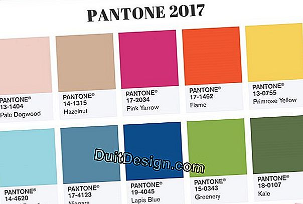 Cor Pantone do ano de 2017