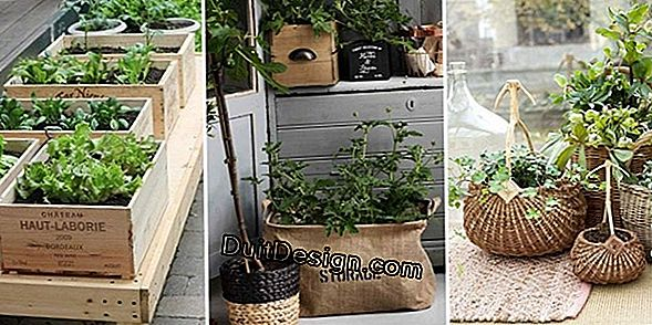 DIY recycle: un suport de umbrelă transformat într-o vază decorativă