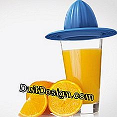 Juicer jeruk 3D