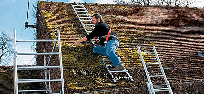 Gutters, tiles, fireplace, window...: successful roof maintenance