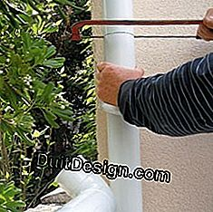 Install a rainwater collector: water