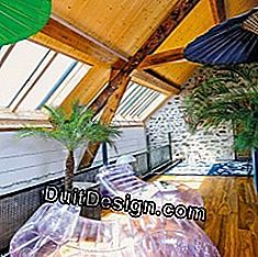 Canopy in the roof