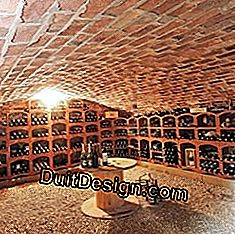 Wine cellar in the house