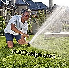 Install an automatic watering