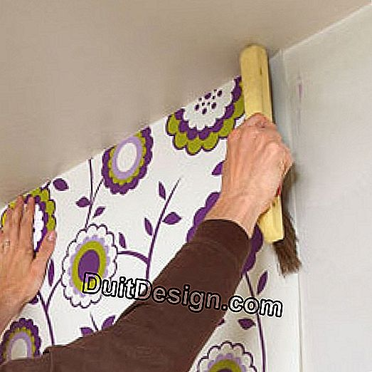 Wallpaper: apply a non-woven: glue